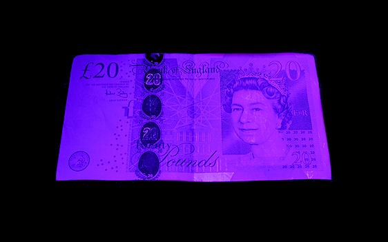 2. Under POOR QUALITY UV  -  Shown using a 'Cheap' 390-405nm UV LED Black light Torch  Far too much visible violet light (interference) produced due poor quality UV LEDs thus producing a poor quality result.  Many people mistakenly believe that a bright purple 'visible' beam means a high UV performance.  The reverse in actually the case and the visible purple glare is an unwanted bi-product resulting from poor quality UV LEDs!